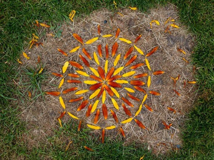 activité automne enfant land art