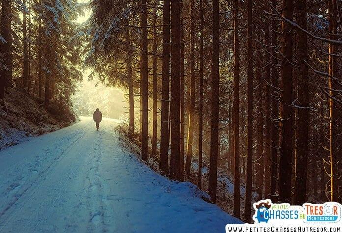 promenade dans les bois avec les enfants