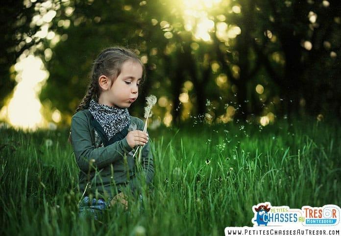 une enfant en pleine nature qui ramasse des pissenlits