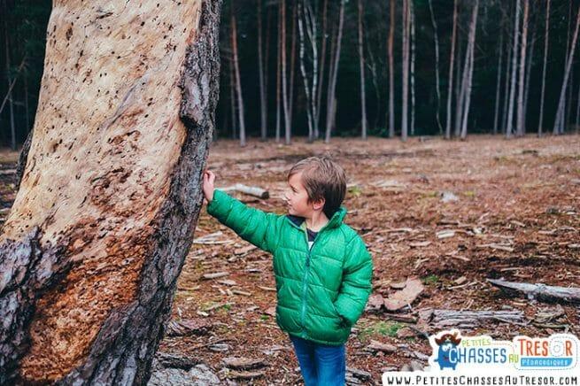 Un enfant qui joue dans la forêt peut attraper la maladie de lyme