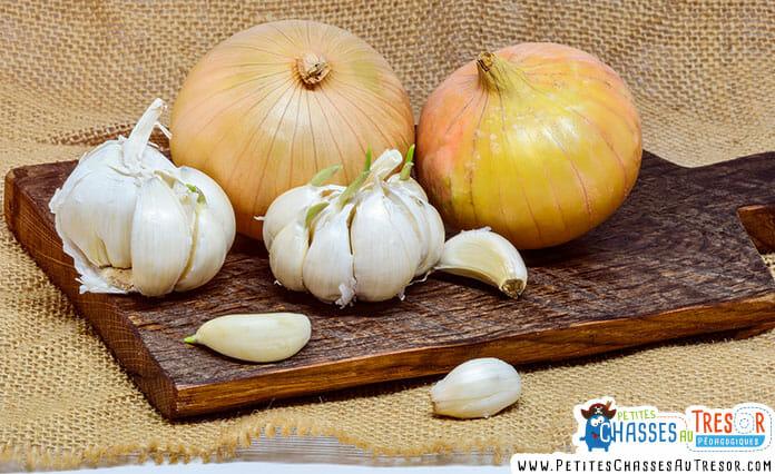 L'oignon et l'ail ont des propriétés antiseptiques